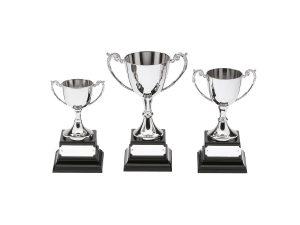 Coppe due mani personalizzate per premiazioni